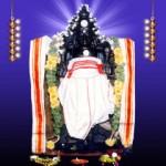 Chandran - Thingalur