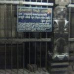 Thiruvanaikoil_saniswarar_9thJuly2016 (1)